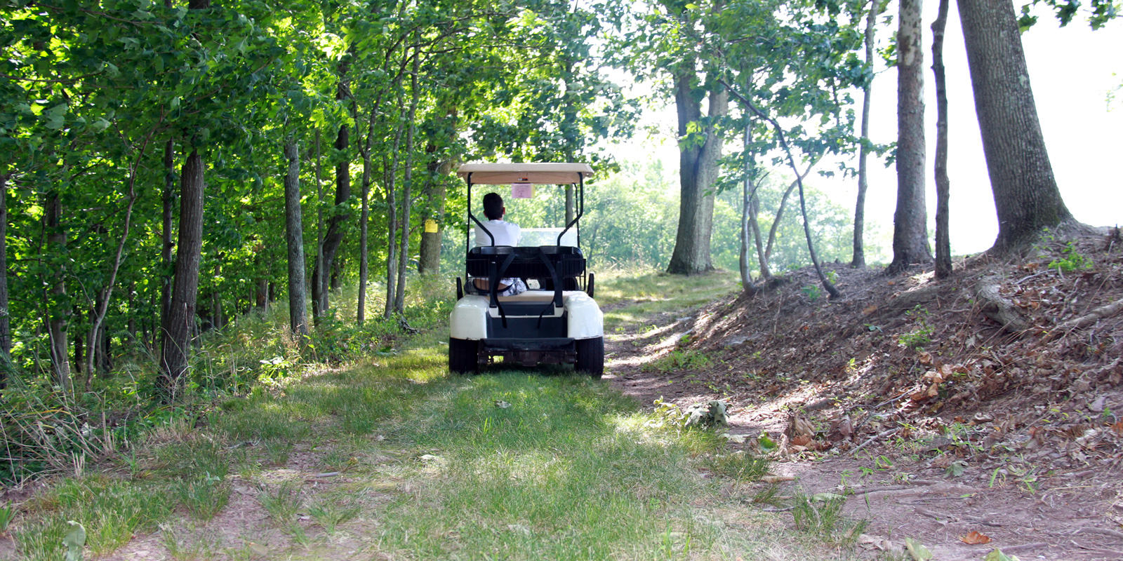 home-golf-cart-driving