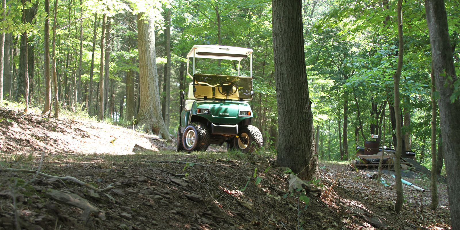 home-golf-cart-go-anywhere-b